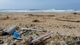 Micro plastics length of shoreline