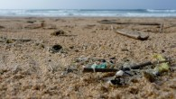 Micro plastics length of shoreline